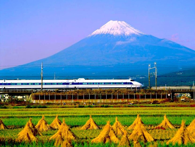 Harvesting-fields-as-Bullet-Train-screams-past-Mount-Fuji-Japan